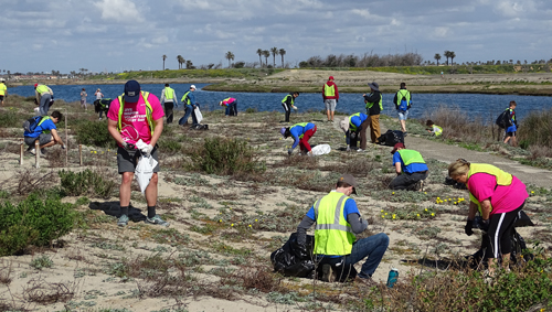 Members of CRC and the community pick up trash at the Bolsa Chica Conservancy
